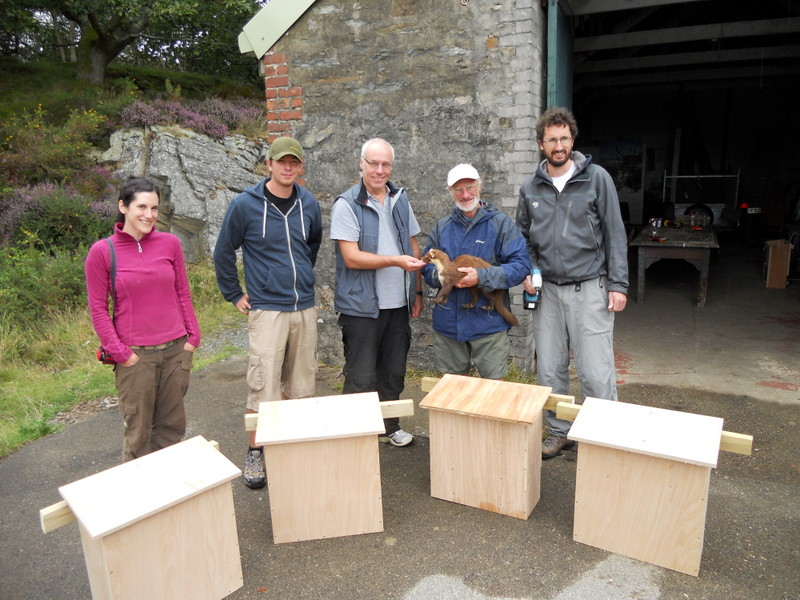 volunteers-making-den-boxes