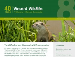 VWT Newsletter 2015 crop